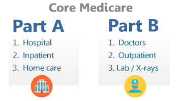 Part A and B with Traditional Medicare